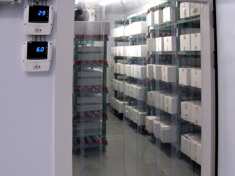 What Should Be Done For Cold Room Systems Failure Problems?
